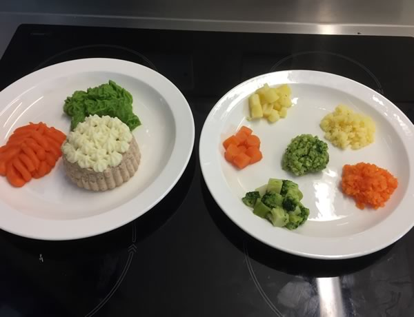 Textured modifed diets training
